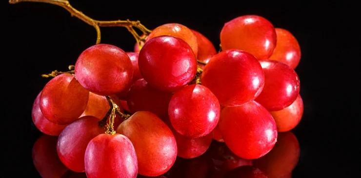 Ekstrakt z pestek winogron – Proantocyjanidyny