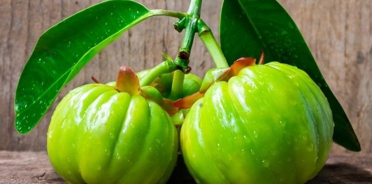 Garcinia Cambogia – naturalny środek na szczęście i szczupłą sylwetkę